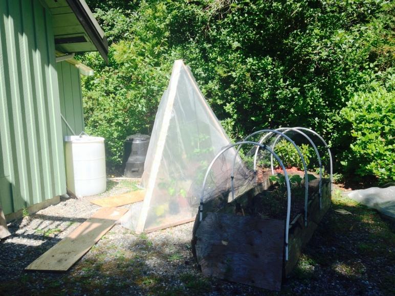 My Garden of Sustainability